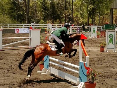 3 horseback riding classes a week, Xochimilco