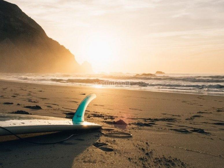 Surf en nayarit
