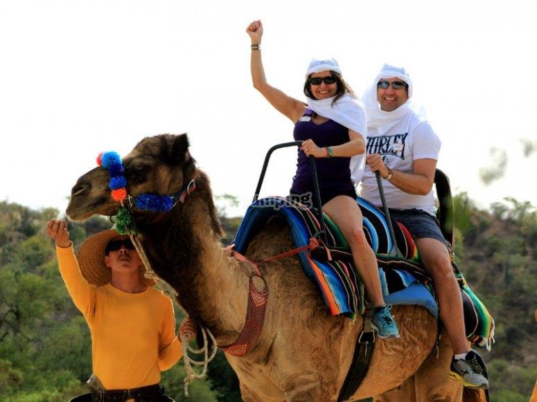 Ruta en camello por Baja California Sur