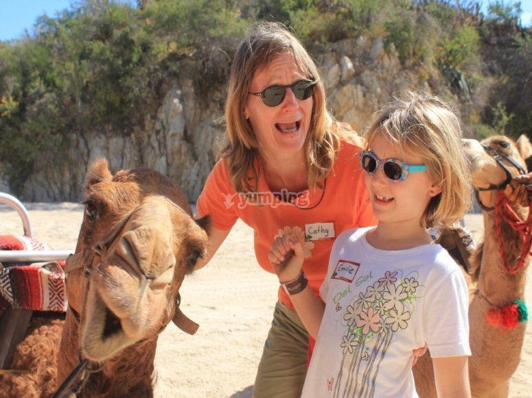 Aventura con los camellos