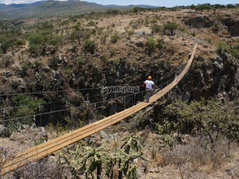 The hnging bridge
