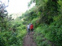 rutas en la naturaleza