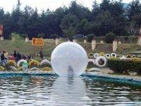 Pool and spheres