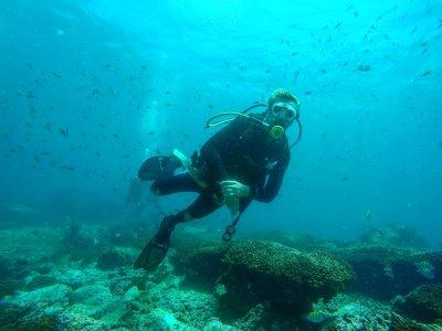 Open Water Diver certificate in Ixtapa Zihuatanejo