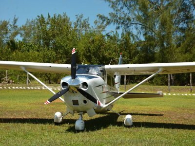 Fight in light aircraft to Holbox + whale shark
