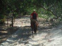 Aprende a cabalgar