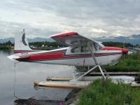 Vuelo en avioneta Cessna 182 por 30 minutos