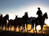 horseback riding in Valle