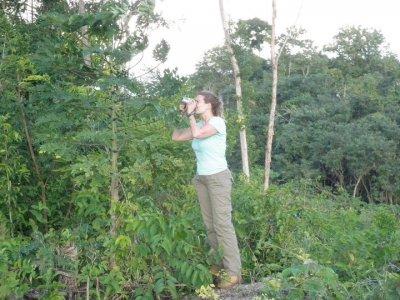 Mayan World Adventures