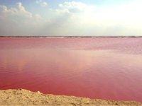 Las Coloradas en Rio Lagartos Yucatan