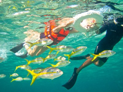 Snorkel in Puerto Morelos + lunch party