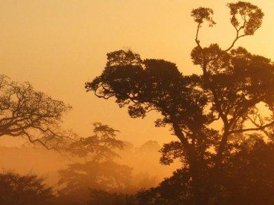 Explora Chiapas Caminata