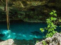 Cenotes in Playa del Carmen
