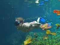 Snorekel in open cenote