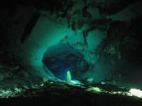 Diving experiences in the cenotes