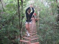 Cross the jungle suspension bridge