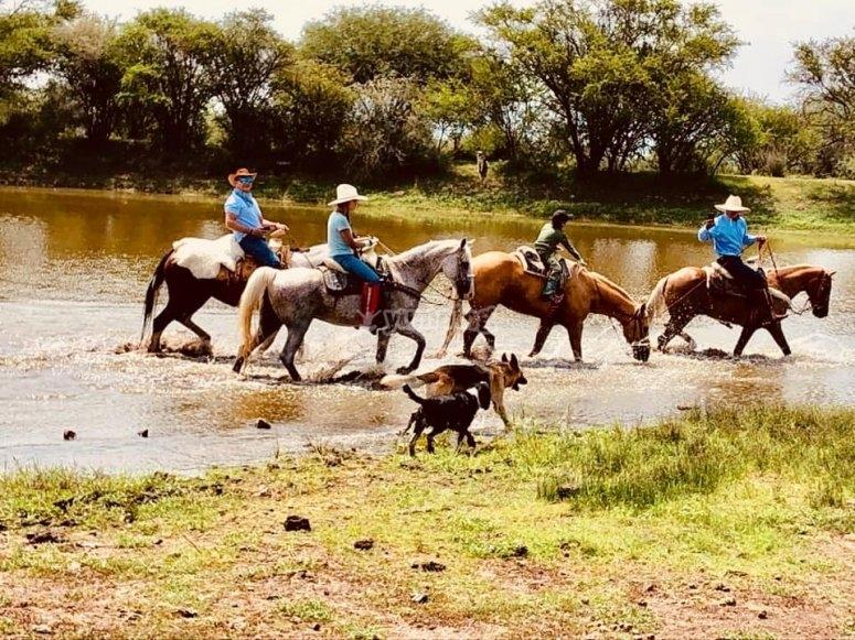 Horseback riding and water