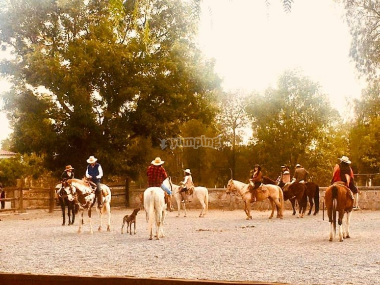 Horseback riding in the countryside
