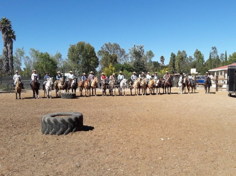 Horseback riding in a group