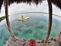 paddle that paddles