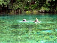 snorkel en cenotes