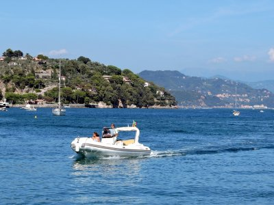 Speedboat rental with water ski in Tequesquitengo