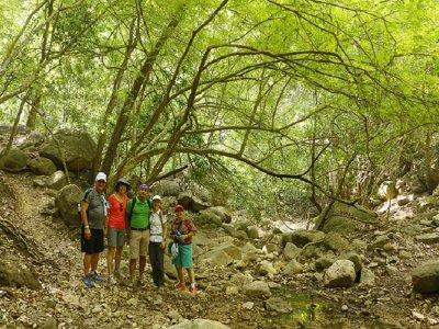 Caminata en Puerto Vallarta por Sierra Madre