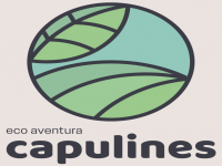 logo ecoaventura capulines