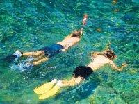 Snorkel en par