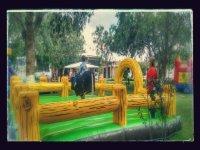 Renta de toro mecánico en la Ciudad de México