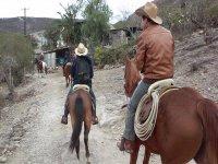 Take the horseback ride