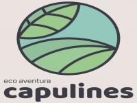 logo ecoave ntura capulines