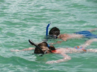 Veracruz Adventures Snorkel