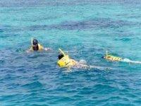 snorkel cancun
