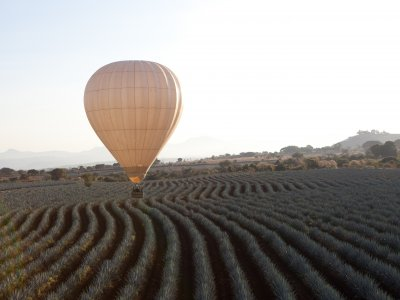 Balloon flight and Tequila tour for groups Jalisco