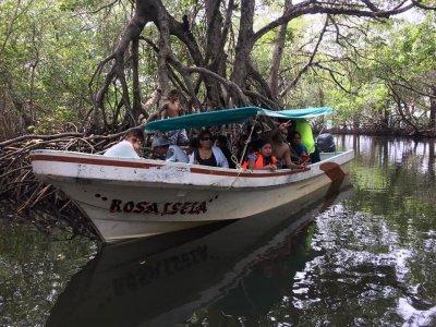 Paseo en lancha y tour en Sontecomapan por 4 horas