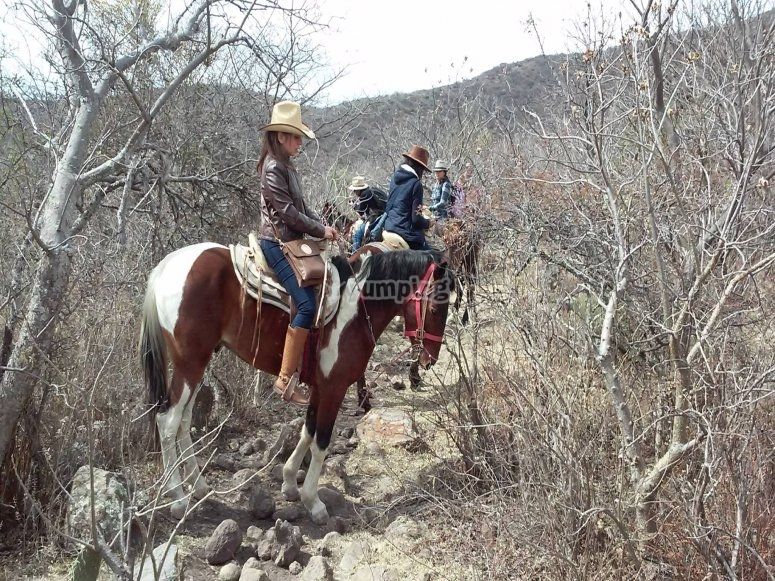Riding in the ranch