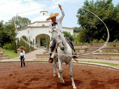 Horse riding in Tequila Route