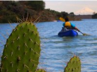Kayak behind the cactus