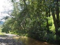 Arroyo La Huerta