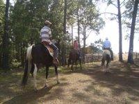 Together on horseback