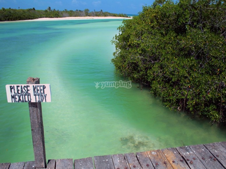 charming lagoon
