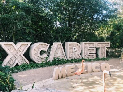 Pass to Xcaret with food and transportation from Cancun