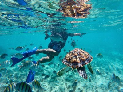 General access to Xcaret and snorkeling tour