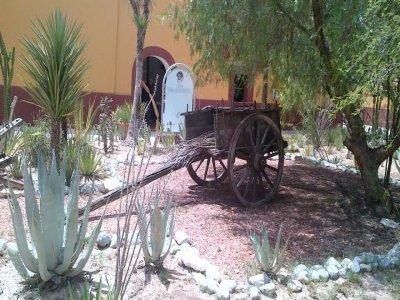 Archaeological tour in Mina Nuevo León