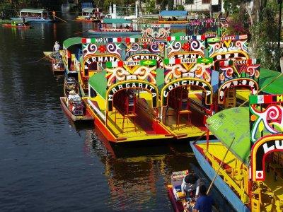 Discover Xochimilco and Coyoacán