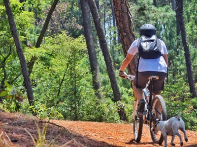 Bike tour through Valle de Bravo