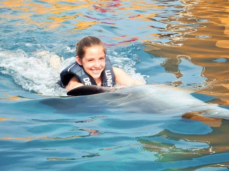belly ride con delfines