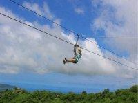 canopy divertido