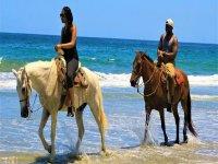 Tour de caballos